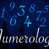 Numerology for the Day